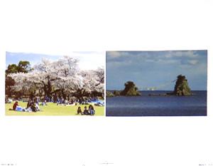 Salayamada011
